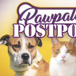 Pawpaloosa 2019 Postponed to Later Date